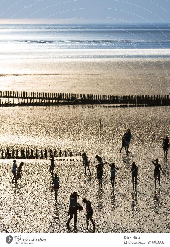 Watt n' Meer Mensch Ferien & Urlaub & Reisen Jugendliche Sommer Wasser Sonne Strand Ferne 18-30 Jahre Erwachsene Umwelt Küste Freiheit Menschengruppe Tourismus