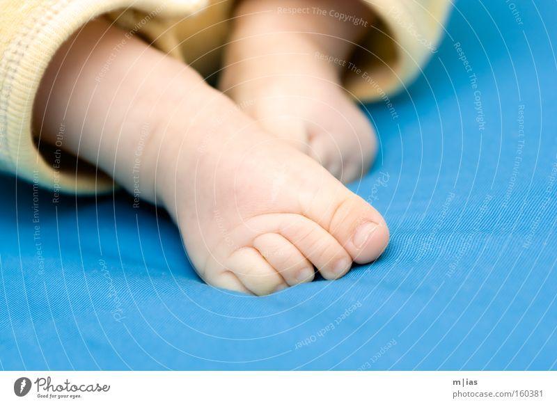 immer auf dem teppich bleiben. Fuß Baby Zehen Beine Kontrast türkis Wachstum Vertrauen Mut laufen zart Vorsicht zerbrechlich Kleinkind alleinerziehend Barfuß