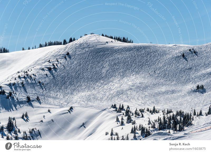 Bergwinter Umwelt Natur Landschaft Himmel Winter Schönes Wetter Schnee Hügel Berge u. Gebirge Gipfel Schneebedeckte Gipfel blau weiß Farbfoto Außenaufnahme