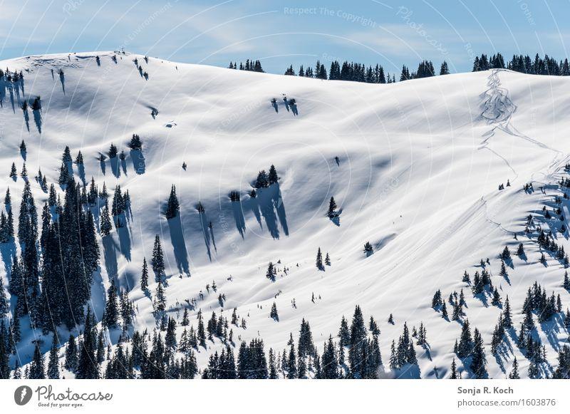 Bergwinter Umwelt Natur Landschaft Himmel Winter Schönes Wetter Schnee Baum Hügel Berge u. Gebirge Freiheit Pause Ferne Skispur Bäume sanft Farbfoto