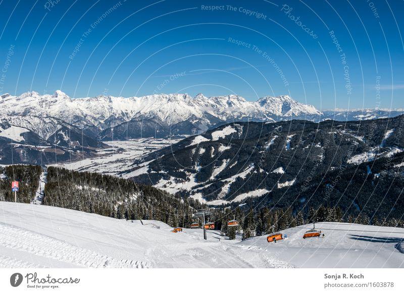 Bergwinter Erholung Ferien & Urlaub & Reisen Ferne Freiheit Winter Schnee Winterurlaub Berge u. Gebirge Wintersport Skifahren Natur Landschaft
