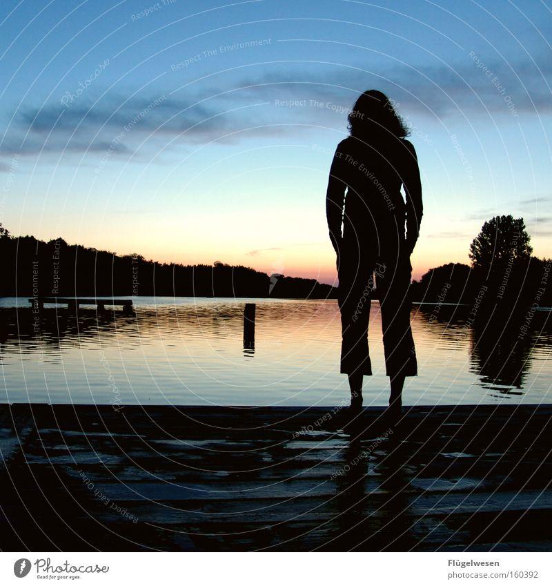 Tagesrückblick Wasser schön Meer Strand Einsamkeit See Küste warten Zukunft Nachthimmel Wunsch genießen Erwartung Sonnenuntergang Abenddämmerung Liebeskummer
