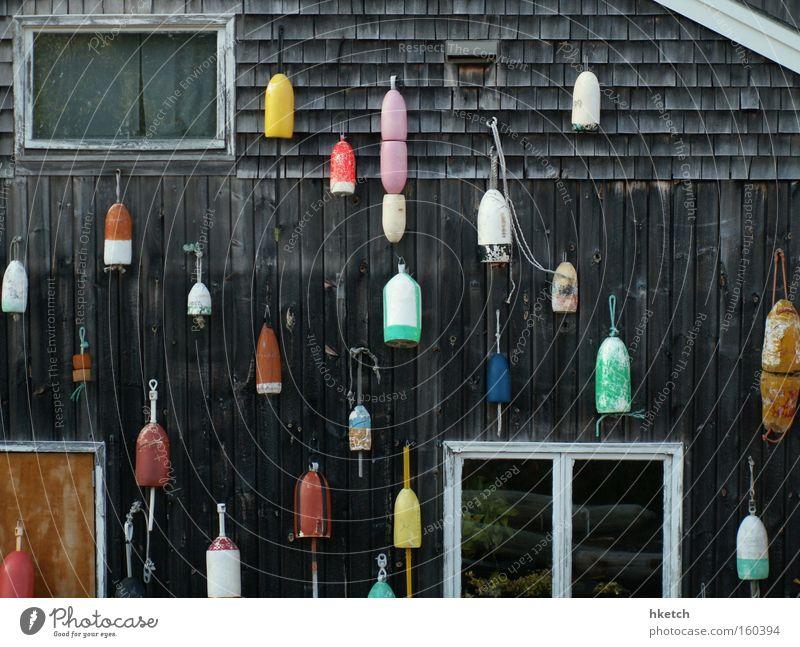 Fishing for Compliments Boje Fisch Angeln mehrfarbig Angelköder Ernährung Fischer Haus Hütte aufhängen Maine Freizeit & Hobby Meer Lebensmittel Acadia