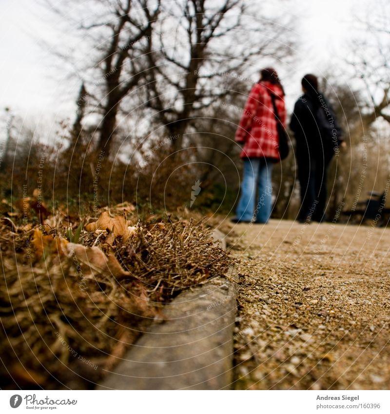 Sonntagsspaziergang Spaziergang Mensch Wege & Pfade Stein Blatt Sand Baum Unschärfe Dresden Garten Park Großer Garten Außenaufnahme