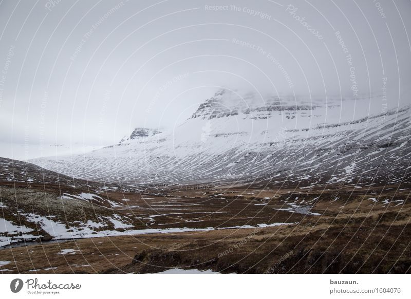 ^. Ferien & Urlaub & Reisen Tourismus Ausflug Abenteuer Ferne Freiheit Expedition Winter Umwelt Natur Landschaft Himmel Wolken schlechtes Wetter Nebel Eis Frost
