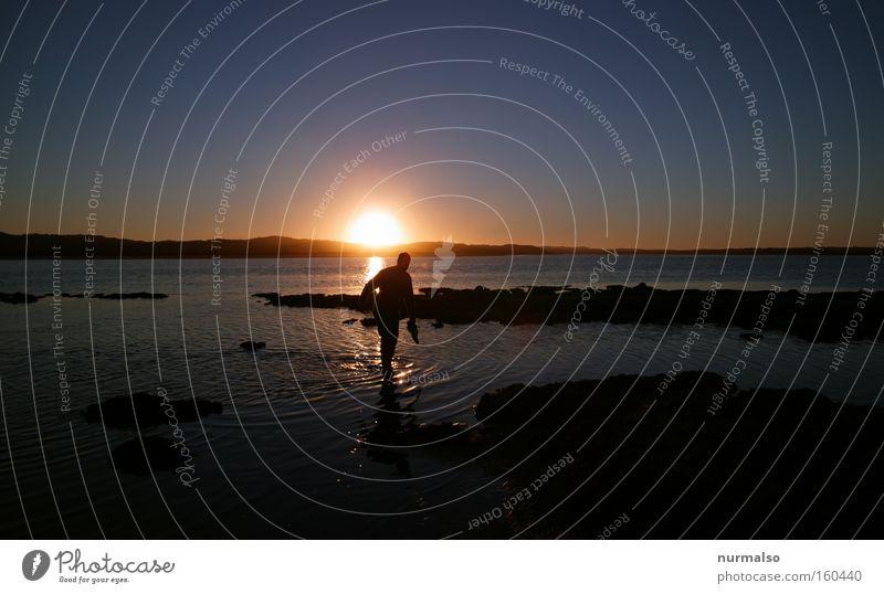 nasse Füsse Meer Sonne Australien genießen Freude Erholung Ereignisse Freiheit Abend Barfuß Horizont Känguruh Mann Sonnenuntergang