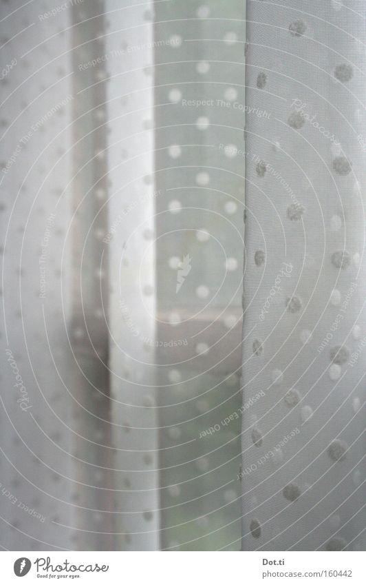 het gordijntje Gardine Vorhang Punkt gepunktet weiß Sichtschutz verstecken Tarnung Fenster Aussicht altmodisch Dekoration & Verzierung Häusliches Leben