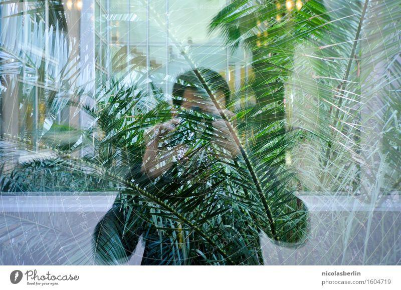 Free as a Bird, Chained to the Sky Mensch Ferien & Urlaub & Reisen Jugendliche Mann Stadt Pflanze schön Ferne Fenster 18-30 Jahre Erwachsene natürlich Lifestyle