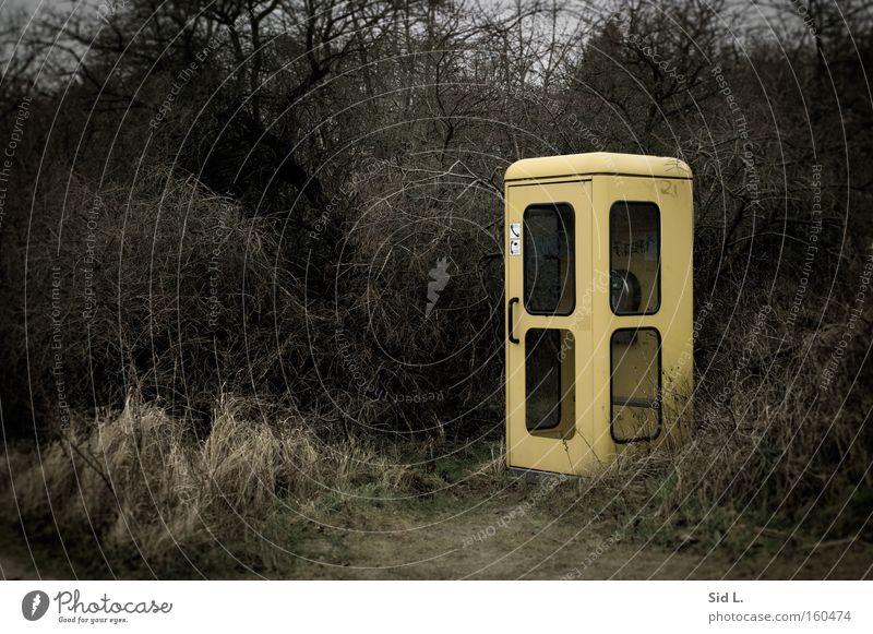 Randlage Telefonzelle bleich gelb Sträucher grau Einsamkeit Deutsche Telekom Hiddensee Winter trist abgelegen Kommunizieren Telekommunikation Außenaufnahme