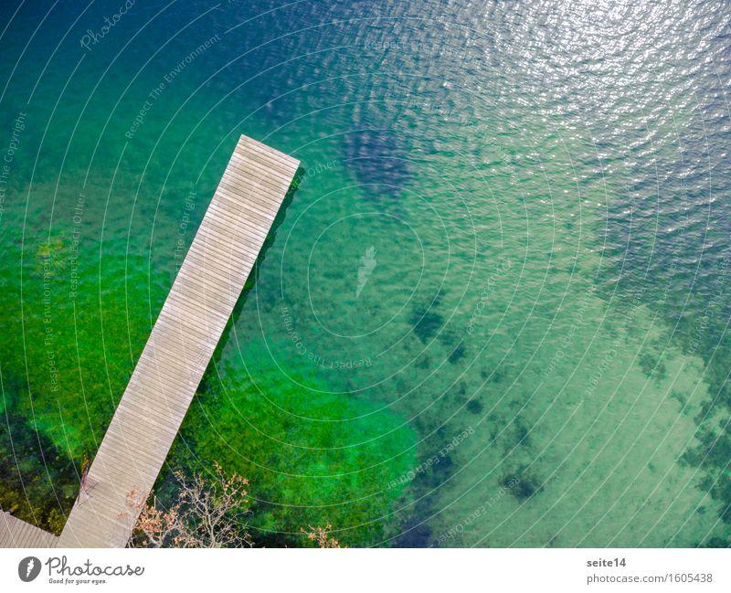 See / Lake. Badesteg, Steg. Luftaufnahme, Drohne. Wellness harmonisch Erholung ruhig Schwimmen & Baden Freizeit & Hobby Angeln Ferien & Urlaub & Reisen Ausflug