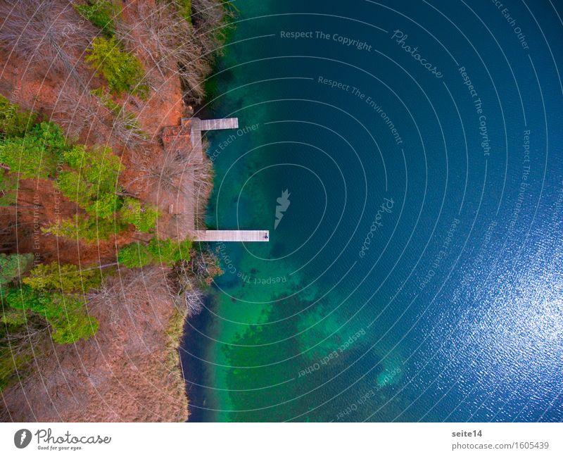 See / Lake. Badesteg, Steg. Luftaufnahme, Drohne. Wald Baum harmonisch Erholung ruhig Schwimmen & Baden wandern Angeln Ferien & Urlaub & Reisen Ausflug Freiheit