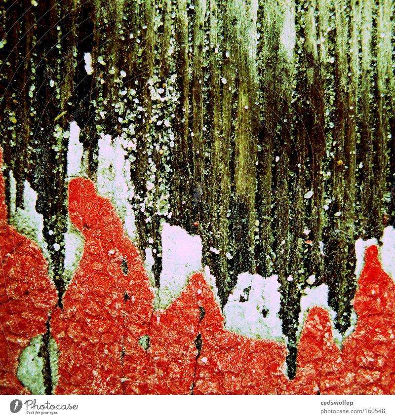 fire and ice weiß rot Farbe Eis Vergänglichkeit obskur Zaun Flamme abstrakt