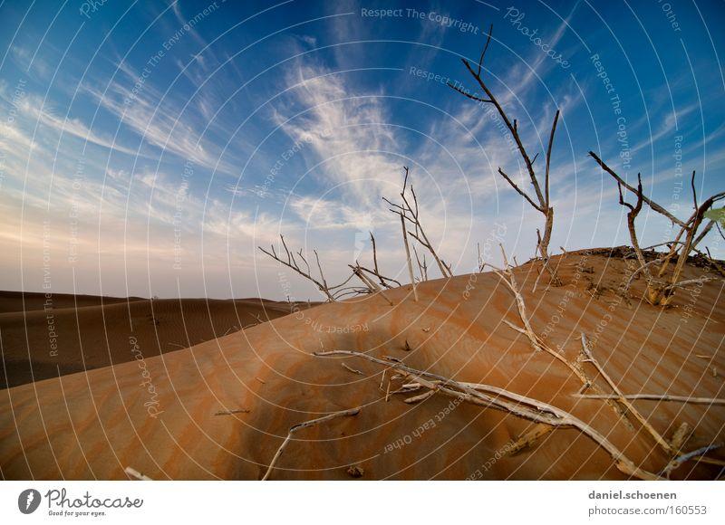 Klimaerwärmung Wüste Sand Düne rot Abend Wolken blau Himmel trocken Wärme Wind Ferien & Urlaub & Reisen Naher und Mittlerer Osten Expedition Dürre Erde