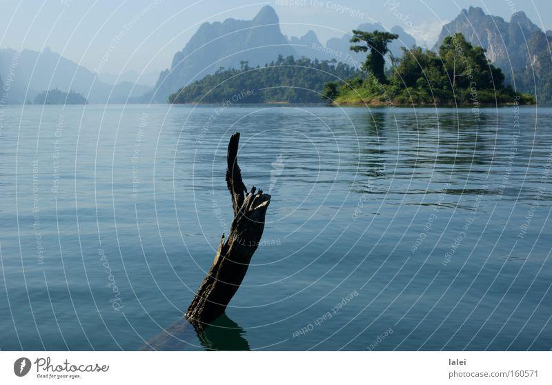 Rachabrapha-Stausee Ast Wasser Berge u. Gebirge Natur Blauer Himmel Asien Thailand Baum Urwald Landschaft See Ferien & Urlaub & Reisen Khao Sok Insel