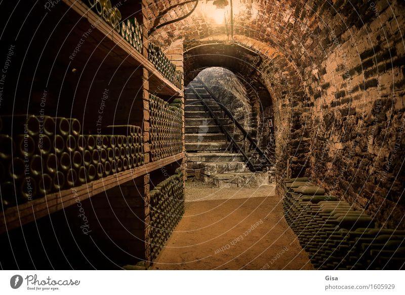 Weinkeller (Aufgang) alt dunkel Holz Feste & Feiern Stein braun Sand Metall Treppe Glas authentisch warten Europa trinken Landwirtschaft Gastronomie