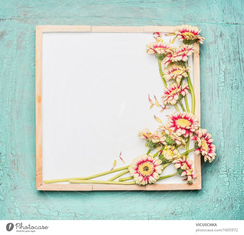 Leere weiße Tafel und hübsche Blumen Natur Pflanze Sommer Farbe Blatt Innenarchitektur Liebe Blüte Stil Garten Feste & Feiern Party Design Häusliches Leben