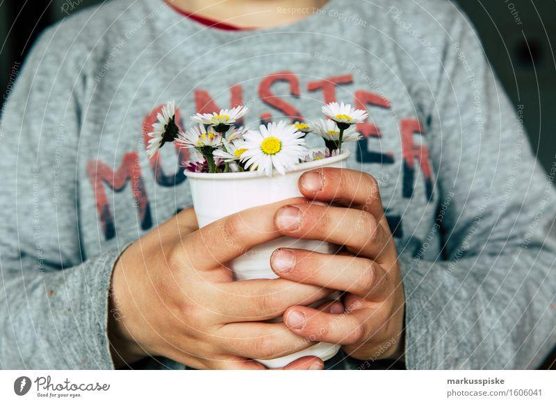 gänseblümchen zum muttertag Mensch Kind Hand Blume Blüte Junge Lifestyle Spielen Glück Wohnung maskulin Häusliches Leben Freizeit & Hobby Körper Geburtstag
