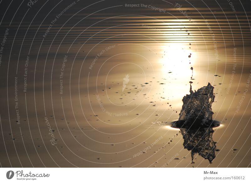 Sunsplash Sonne Sonnenuntergang Wasser See Wasserspritzer ruhig Gewässer Stimmung spritzen Symphonie sunshine Water