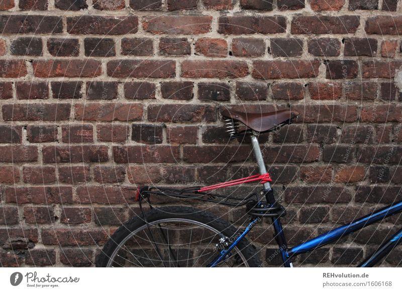 fahrrad blau Wand Bewegung Sport Mauer Stein braun Fahrrad nachhaltig Parkplatz Alltagsfotografie parken