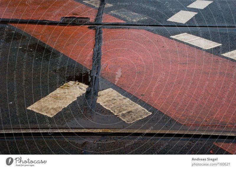 Lebenserwartung: 30 Sekunden Dresden Fahrbahn Straße Schilder & Markierungen Teer Linie Fahrradweg Farbe Gleise Verkehr nass Regen dreckig Naht rot schwarz weiß