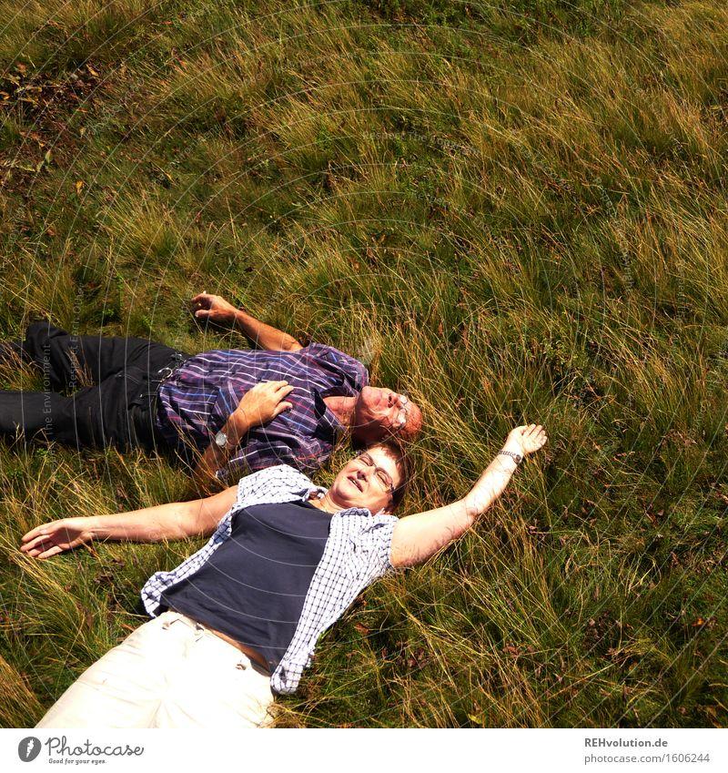 Pause Mensch Frau Natur Mann alt Pflanze grün Erholung Landschaft Freude Erwachsene Umwelt Wiese Gras feminin Gesundheit