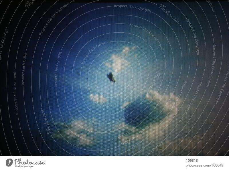 Fotonummer 115357 Fliege Wolken Himmel fliegen rein Flucht hängen kleben Raster Spiegel rückwärts Surrealismus Fenster Freiheit gefangen frei Tier Insekt behind