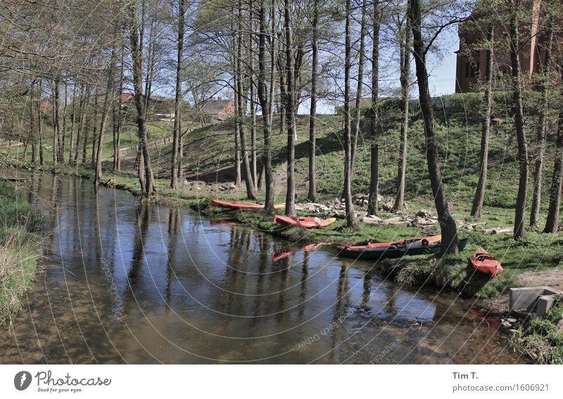 Paddeln Freizeit & Hobby Ferien & Urlaub & Reisen Ausflug Abenteuer Freiheit Camping Sommer Flussufer Drawa Dorf Polen Bach Mai Kanu Ruderboot Farbfoto