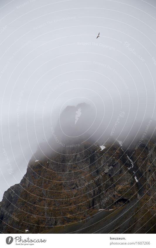nebel. Himmel Natur Ferien & Urlaub & Reisen Landschaft Einsamkeit Wolken Ferne Winter Berge u. Gebirge kalt Umwelt Freiheit Tourismus träumen Wetter Nebel