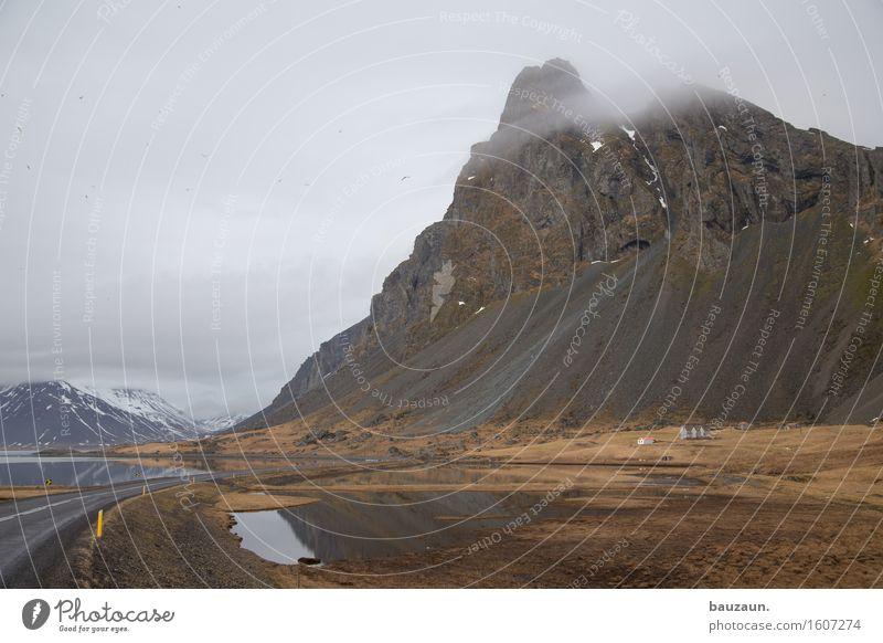 vögel. Natur Ferien & Urlaub & Reisen Wasser Landschaft Wolken Ferne Winter Berge u. Gebirge kalt Umwelt Traurigkeit Gras Schnee Freiheit Tourismus Wetter