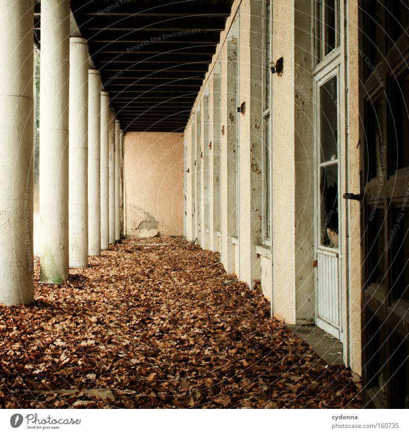 [Weimar 09] Säulengang Blatt Leben Herbst Fenster Zeit Vergänglichkeit verfallen Verfall Zerstörung Erinnerung Gang Leerstand Arkaden