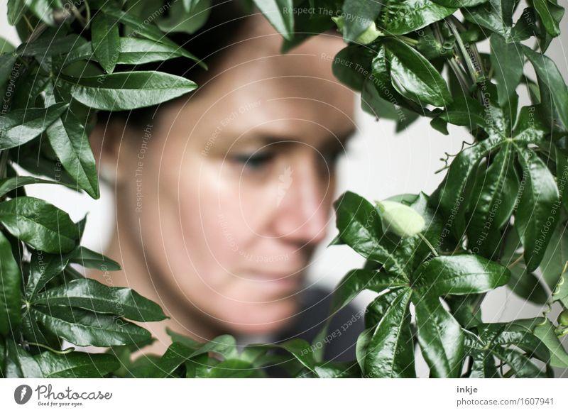 Rund   Blätterrahmen Lifestyle Stil harmonisch Wohlgefühl Sinnesorgane ruhig Frau Erwachsene Gesicht 1 Mensch Pflanze Blatt Grünpflanze exotisch Kletterpflanzen