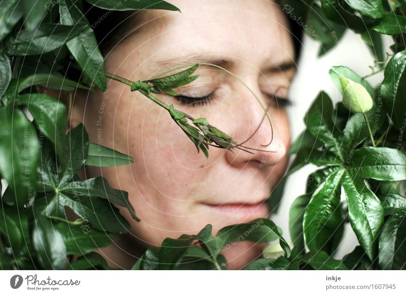 Rund | umrankt Mensch Frau Natur Pflanze schön Erholung Blatt ruhig Gesicht Erwachsene Leben natürlich Zufriedenheit genießen Romantik Wohlgefühl