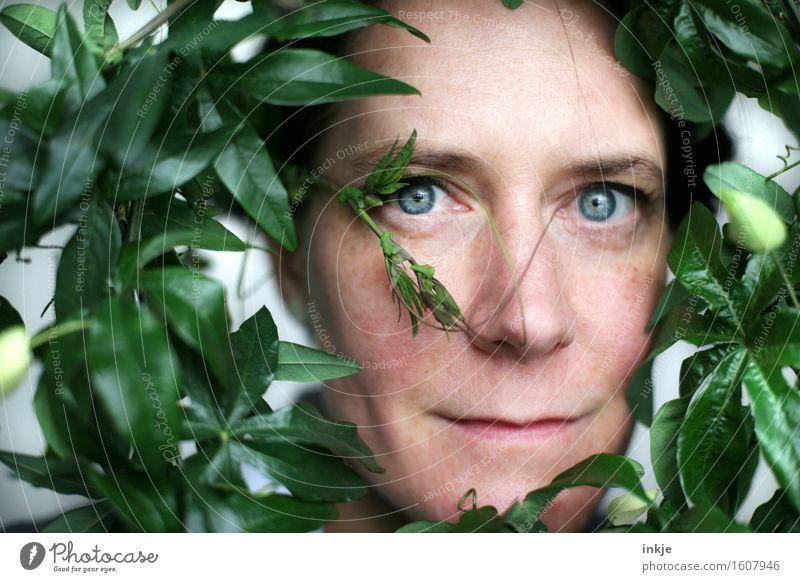 Rund   Durchblick Lifestyle Stil schön Frau Erwachsene Leben Gesicht 1 Mensch 30-45 Jahre Pflanze Blatt Grünpflanze exotisch Passionsblume Kranz Ranke