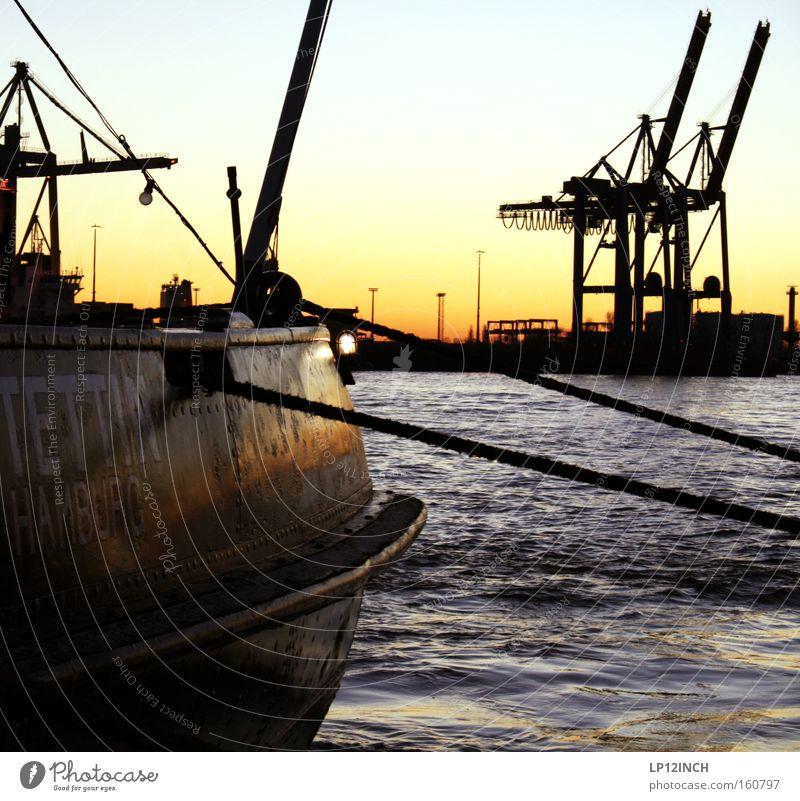 Die Stettin zu Besuch in Hamburg Wasser Wasserfahrzeug warten Seil Hamburg Rohstoffe & Kraftstoffe Aussicht Hafen festhalten stark Stahl Rost Stadt Schifffahrt Kran