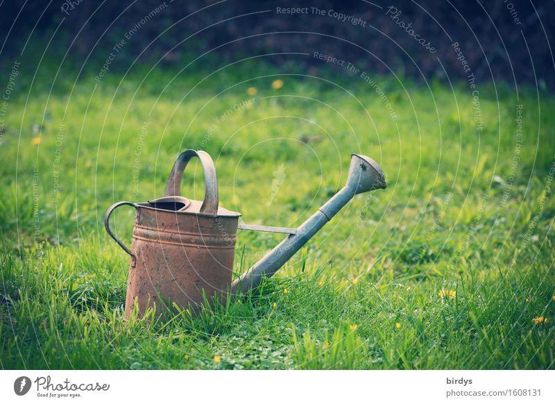 Landlust Natur Sommer Blume ruhig Frühling Herbst Wiese natürlich Gras Garten Freizeit & Hobby ästhetisch warten Gelassenheit nachhaltig positiv