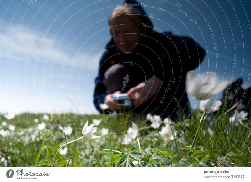 Blumen fotografieren Frau Fotografieren Fotokamera Wiese Natur Begeisterung Technik & Technologie Versuch Interesse Himmel blau Frühling Junge Frau Unschärfe