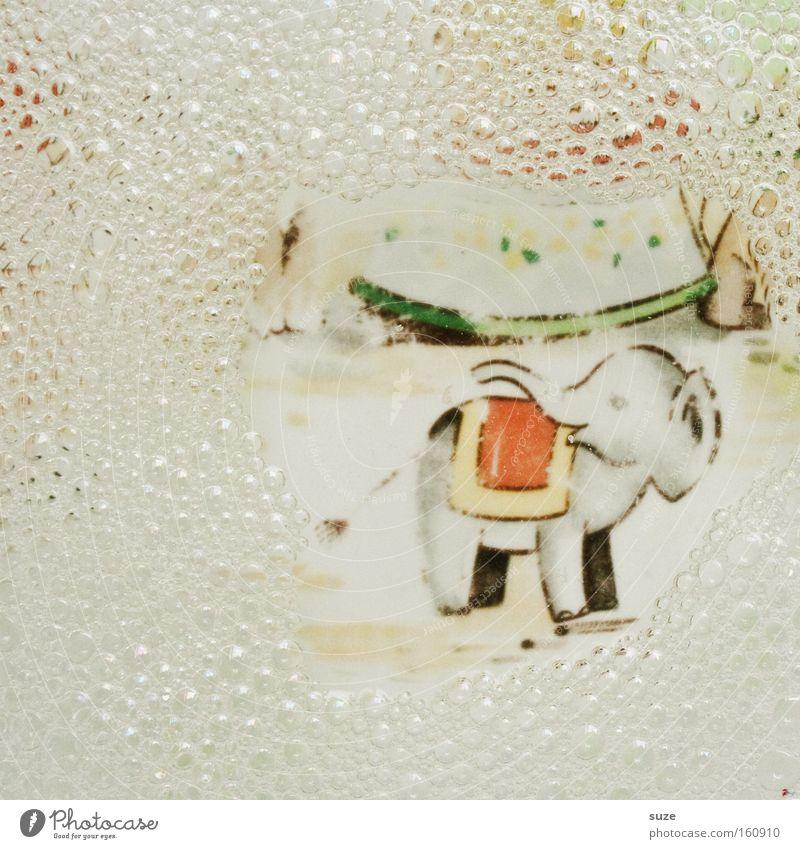 Töräää ... Wasser Kindheit Sauberkeit niedlich Geschirr Blase Teller Kindheitserinnerung Schaum graphisch Elefant Zeichnung gemalt Geschirrspülen Spülmittel