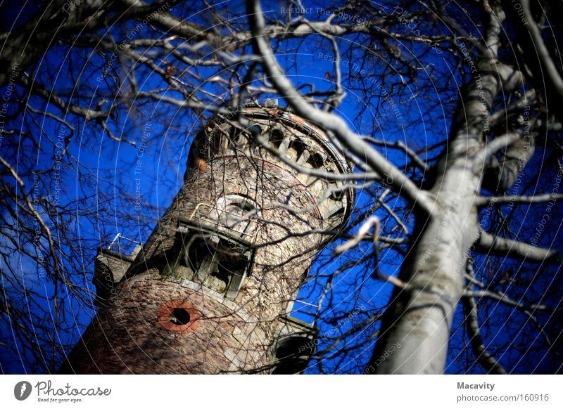Kickelhahn Himmel blau Baum Ferien & Urlaub & Reisen Berge u. Gebirge Freiheit wandern hoch Ausflug Tourismus Perspektive Reisefotografie Turm Schönes Wetter Burg oder Schloss Denkmal