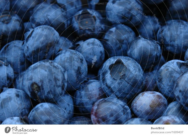 Blaubeerland Frucht Frühstück Bioprodukte Vegetarische Ernährung Slowfood Blaubeeren Freude Gesunde Ernährung Fitness Wellness Leben Meditation Essen wählen