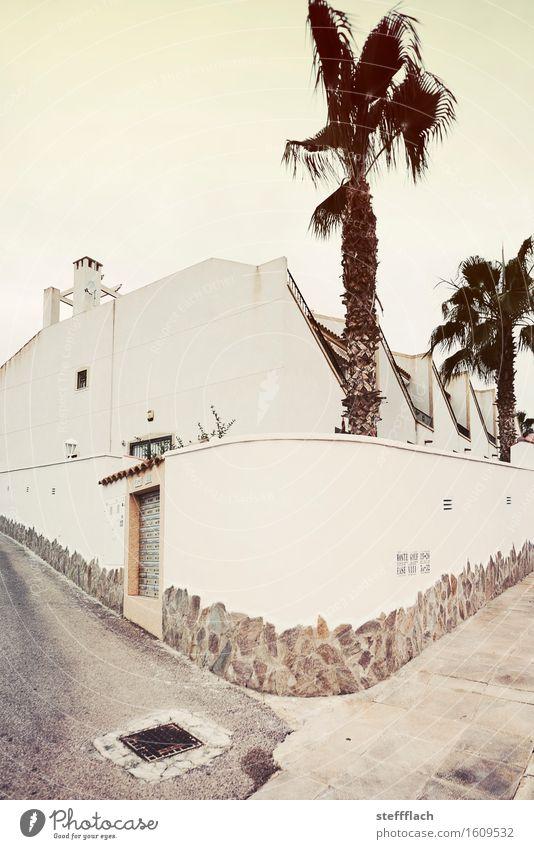 Vor der Mauer, bei dem kleinen Tor … Architektur Sommer Schönes Wetter Wärme Pflanze Palme Dorf Menschenleer Haus Einfamilienhaus Wand Tür Schornstein