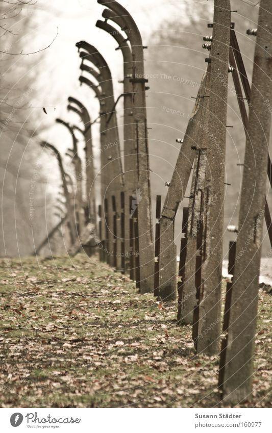 Vergessene Welt befreien Befreiung Konzentrationslager Buchenwald Angst Verfolgung Tod Mord Stacheldraht Rost Metall Metallwaren Stein Zaun Schutz Sicherheit