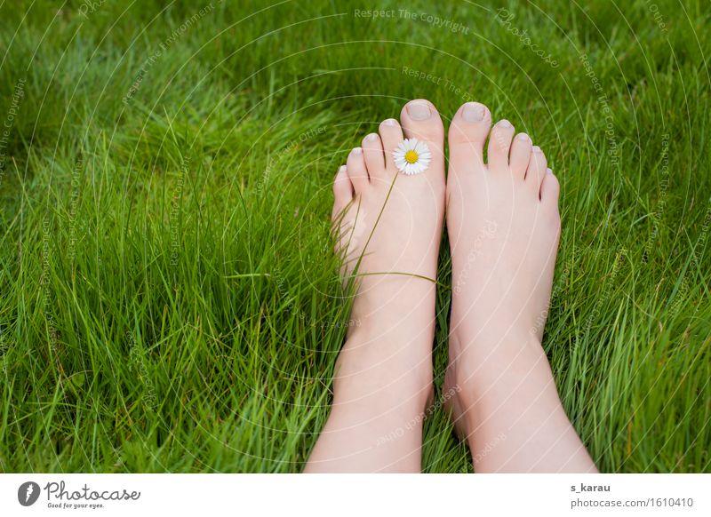 Barfuß Lifestyle Ferien & Urlaub & Reisen Ausflug Sommer Mensch Fuß 1 Gras Erholung Fröhlichkeit Glück grün Freude Zufriedenheit Lebensfreude Natur