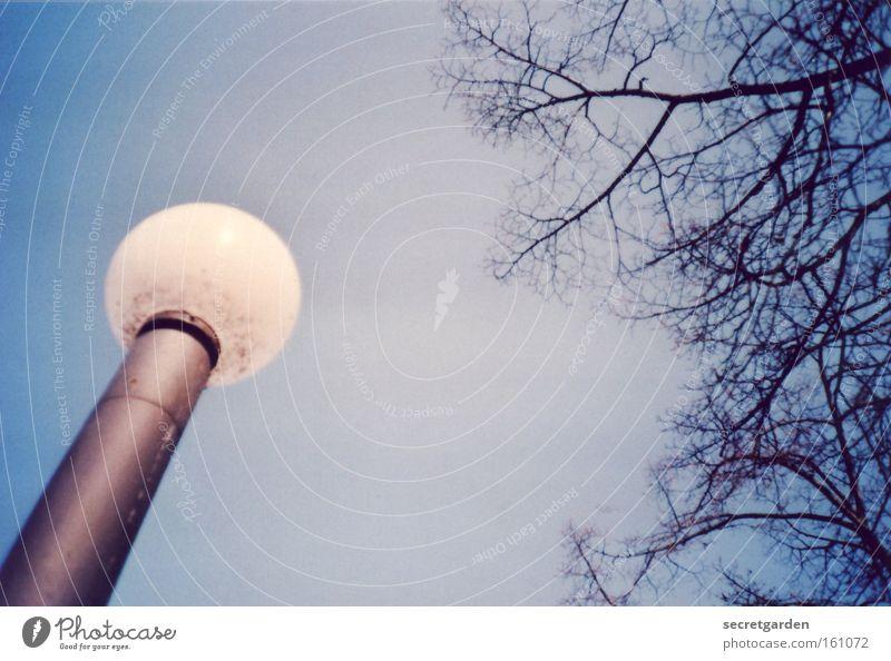 eine leuchte ist sie nicht.... Himmel Natur Baum Wege & Pfade Lampe Park Beleuchtung Glas rund Ast Laterne Kugel Neigung Surrealismus UFO