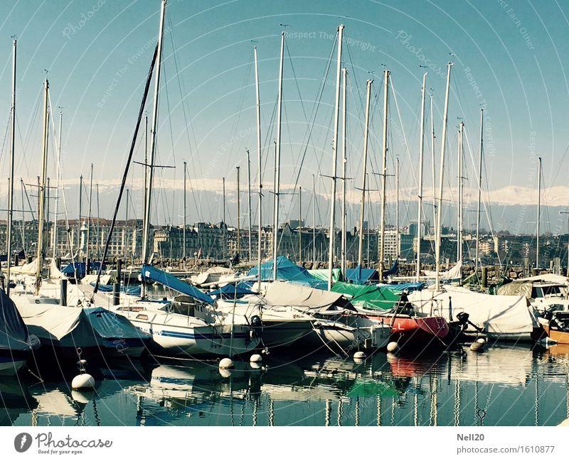 Boote am Lac Leman, Genf Wassersport Schwimmen & Baden Segeln Wolkenloser Himmel Sonne Frühling Sommer Klima Schönes Wetter Alpen Berge u. Gebirge Seeufer