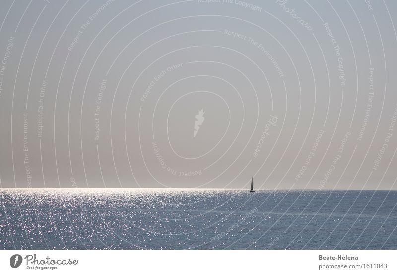 700 | Glänzende Zeiten Himmel Natur Ferien & Urlaub & Reisen blau schön Sommer Wasser Meer ruhig Lifestyle Glück grau Schwimmen & Baden Stimmung glänzend