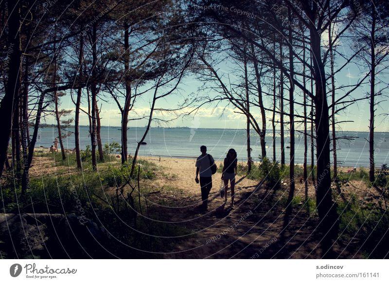 Himmel Baum Meer Sommer Wolken Farbe Wald Sand Abenteuer Mensch