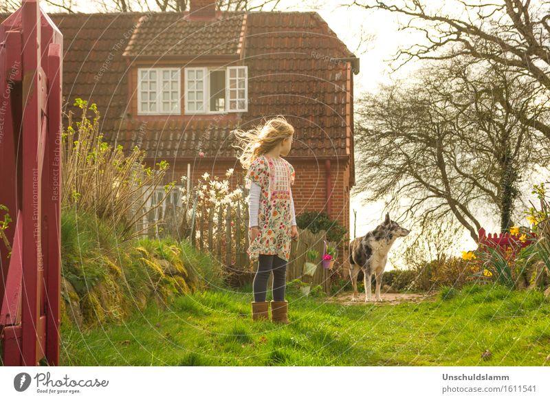 R. und der Wolf Kind Hund Natur Haus Tier Mädchen Gefühle Frühling Garten Stimmung Freundschaft Häusliches Leben Angst Idylle Kindheit Kommunizieren