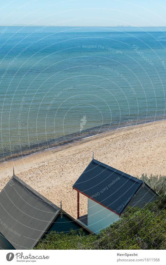 Pazifik vor der Haustür Ferien & Urlaub & Reisen Tourismus Ausflug Ferne Sommerurlaub Sonne Umwelt Natur Landschaft Himmel Wolkenloser Himmel Grünpflanze Wellen