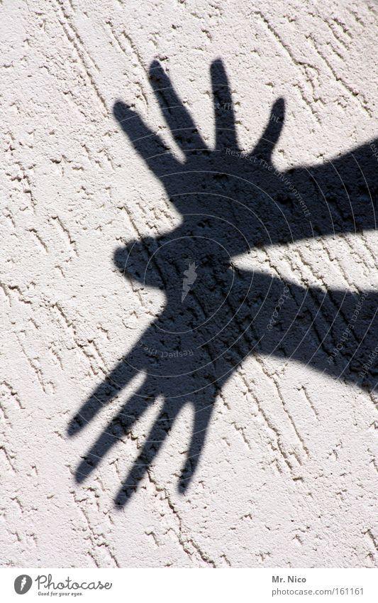 fantasy Hand Freude Tier Arme Finger Schatten Schwarzweißfoto Theaterschauspiel Fantasygeschichte Schattenspiel Literatur Fingerspiel