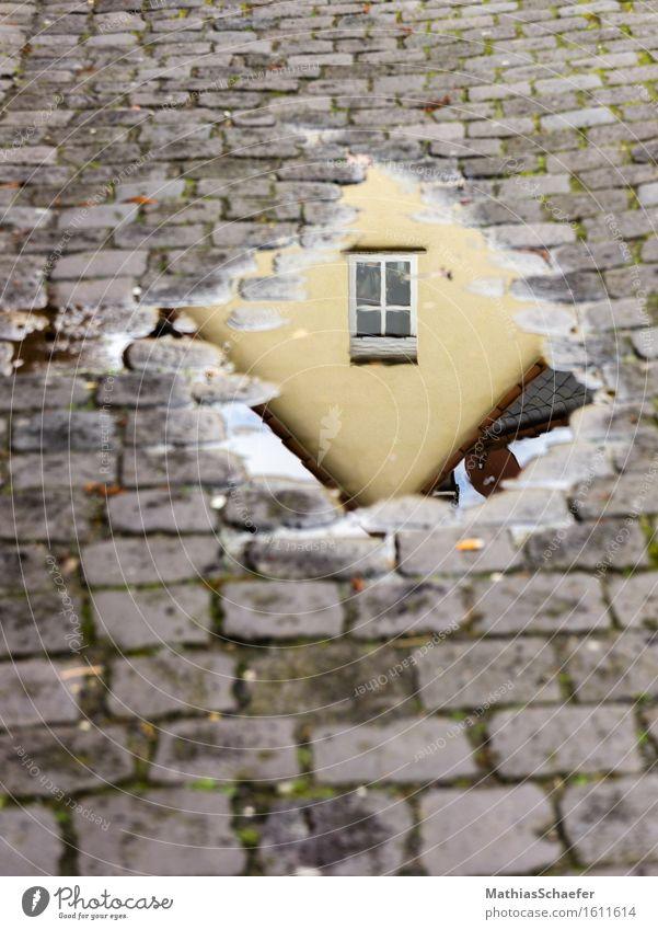 House Reflexions Stadt Haus Fenster ästhetisch Altstadt Stadtrand Einfamilienhaus